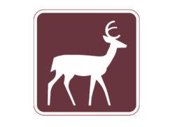 RM-040 Deer Crossing